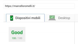 100/100 con Google PageSpeed Insight