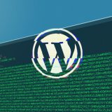 Sito hackerato? Guida Wordpress su come pulire, riparare e risolvere problemi dopo che il tuo sito ha subito un attacco hacker.