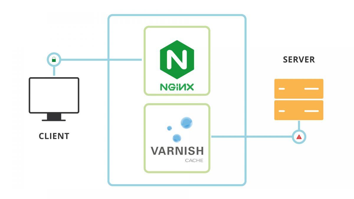 Varnish nasce come acceleratore HTTP e trova il suo impiego più frequente come caching proxy davanti ad Apache, Nginx o altri web server. Vediamo insieme cos'è e quali benefici può portarci!